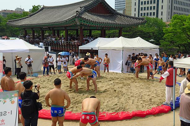 端午の節句は韓国 日本人の反応